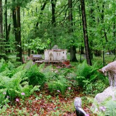 James Tellen's Woodland Sculpture Garden 3