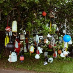Island art environments - Back Road Folk Art